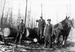 David and James Galbraith Buy a Bush Lot From J.J. Buchanan