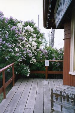 The Depot - Porch with Lilacs
