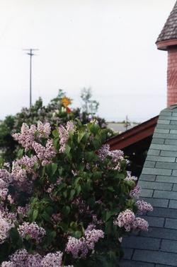 The Depot - Turret View with Lilacs